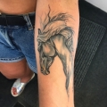 Watercolour Horse Tattoo