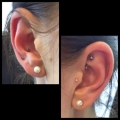 Conch and Rook Piercing St Albans