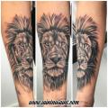 realism Lion Tattoo